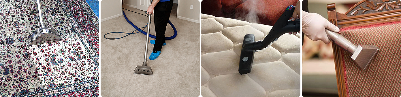 Carpet Cleaning Bay Area Usa Green Carpet Cleaning